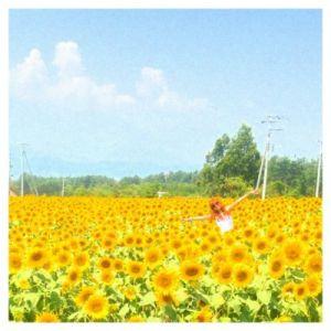 image3 300x300 夏の花畑!明野のひまわり畑「サンフラワーフェス」の3つの魅力♡