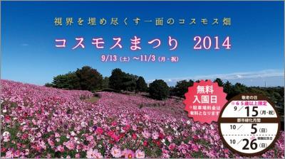 コスモス昭和記念公園 400x223 「秋桜(コスモス)」を見て、秋を感じよう♡
