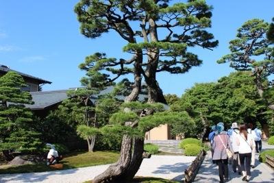 20140921 203705 大根島にある広大な日本庭園 日本庭園由志園