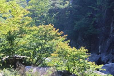 image7 400x266 絶景!昇仙峡のランチスポット♪