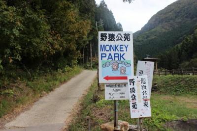 image9 400x266 日本で唯一!温泉に入る猿?!