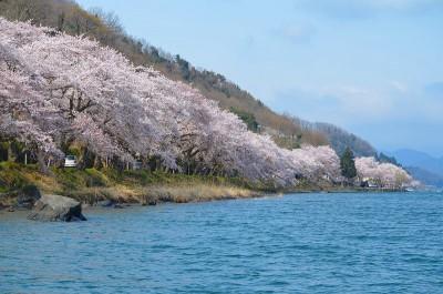 しがけん 400x264 人気急上昇♡春の旅行先ランキングTOP10
