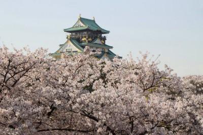 人気急上昇♡春の旅行先ランキングTOP10