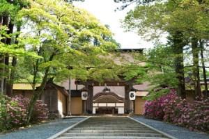 高野山 人気急上昇♡春の旅行先ランキングTOP10